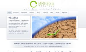 Briggs Wellness